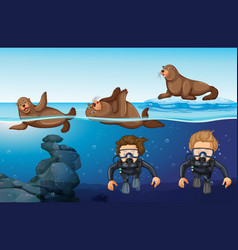 Divers and seals in the sea vector