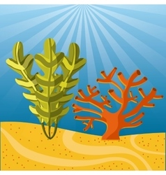 Coral and algae icon sea life design vector