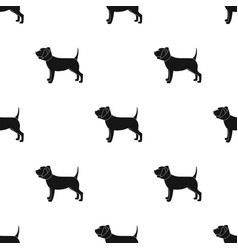 Dog with elizabethan collar icon in black style vector