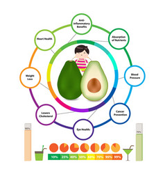 Amazing health benefits of avocado vector