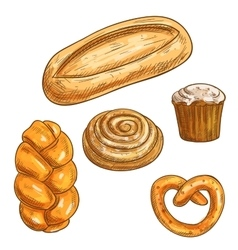 Bread sorts and bakery products pencil sketch vector image vector image