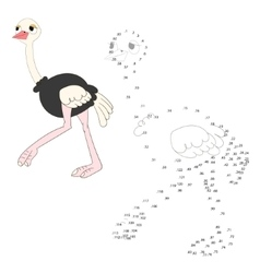 Connect the dots game ostrich vector