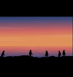 Silhouette of penguin beauty landscape vector