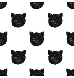 Sick cat with bandage on a head icon in black vector