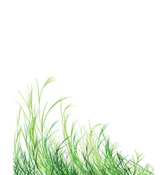 Grass is greener background vector