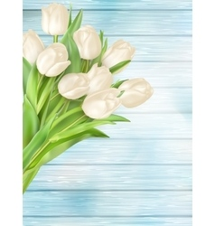 Fresh white tulips on wood planks eps 10 vector