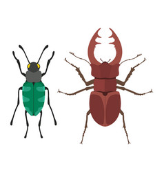 Insect icon flat isolated vector