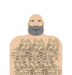 Man with bald head hillbilly with hairy chest vector
