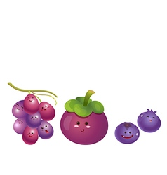 Cute fruits grape mangosteen blueberry vector