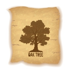 Oak tree on old paper vector