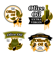 Olive oil bottle label set with black fruit leaf vector