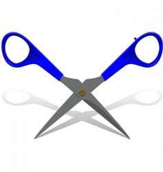 hairdressers scissors vector image