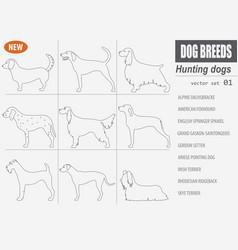 hunting dog breeds set icon isolated on white vector image