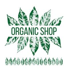 Organic shop emblem vector image vector image