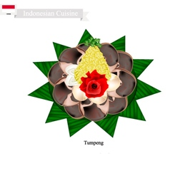 Tumpeng or indonesian cone shaped rice vector