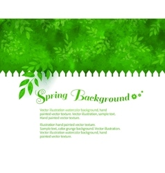 Background with green shrubs vector
