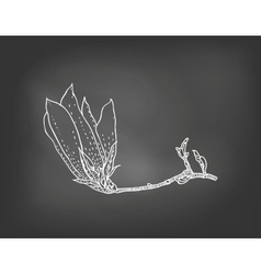 Card with magnolia flower on chalkboard vector