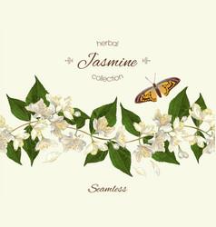 Jasmine seamless border vector