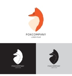template of fox vector image vector image