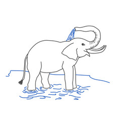 Elephant pouring itself with water vector