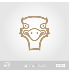 Ostrich outline thin icon animal head vector