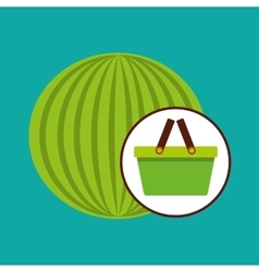 green basket fresh watermelon design icon vector image vector image