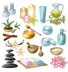 Spa salon decorative icons set vector