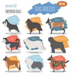 shepherd dog breeds sheepdogs set icon isolated vector image