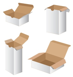 Collection box packaging design collection box vector