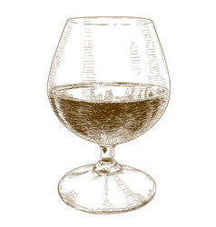 engraving of glass with wine vector image vector image