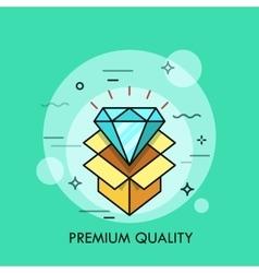 Shining diamond and opened cardboard box vector image