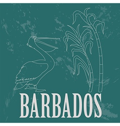 Barbados national symbols pelican sugarcane retro vector