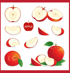 set of red apple in pieces whole slice and half vector image