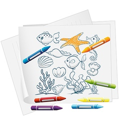 A paper with a doodle design of the different sea vector image