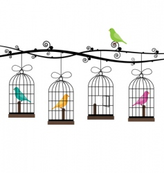 bird cages vector image