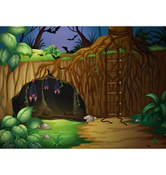 A cave and bats vector image