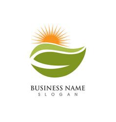 Sun logo icon template vector
