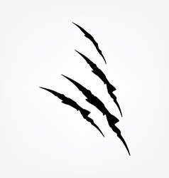 Black claw scratches vector image