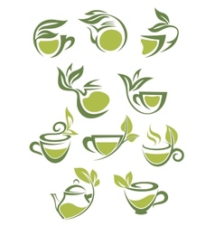 Green or herbal tea icons vector image