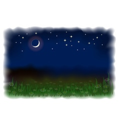night landscape vector image