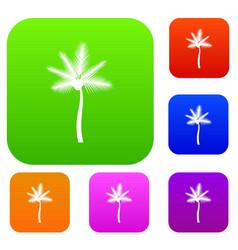 Palm butia capitata set collection vector