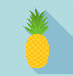 pineapple icon with long shadow vector image