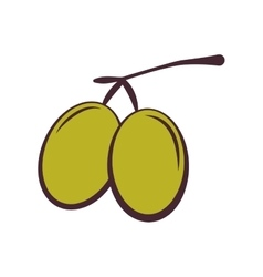 Olive fruit icon organic and healthy food design vector