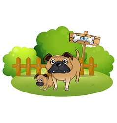 A big and a small dog near the signboard vector image vector image