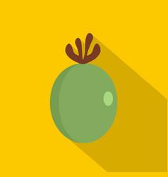 green fresh feijoa fruit icon flat style vector image vector image