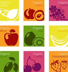 OrganicFruits vector image vector image