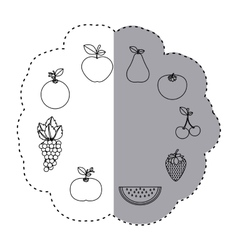 Sticker contour pattern with fruits in circular vector