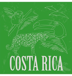 Costa Rica national symbols Dolphins jaguar toucan vector image vector image