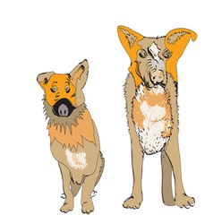 Couple of Dogs vector image
