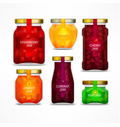 homemade fruit jam jars vector image vector image